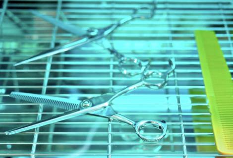 除菌・浄水・空気浄化